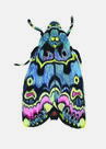 Lily-Moth-(An-Inordinate-Fondness-#-3)-Roos-Holleman